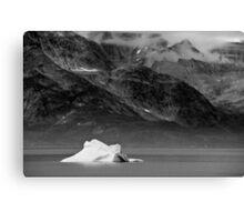 A lone Iceberg Canvas Print