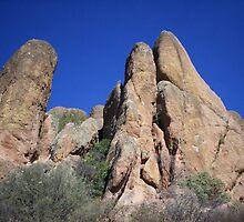 Pinnacle by CrystalMalice