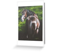 Evening Star Greeting Card