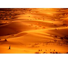 Valley of Life Photographic Print