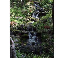 Rainbow Springs, Florida Photographic Print