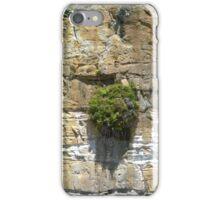 Sandstone Cliff iPhone Case/Skin