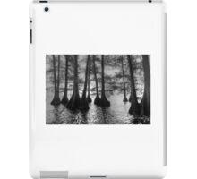 Cypress trees Tenessee   iPad Case/Skin
