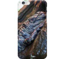 Sleeping Gator iPhone Case/Skin