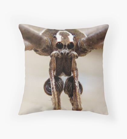 Why Hello There Throw Pillow