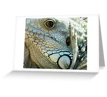 IGUANA EYES Greeting Card