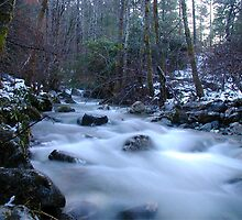 Mill Creek by TimsWorld