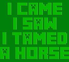 I Came I Saw I Tamed A Horse by GreenGamer
