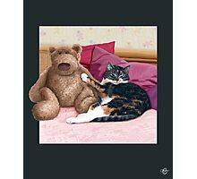 Cat and Teddy Bear Photographic Print