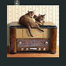 Cats and Radio by Martine Carlsen