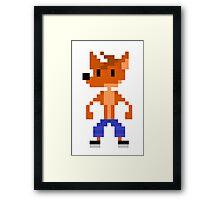 Crash Bandicoot Pixel Framed Print