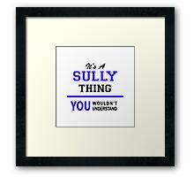 It's a SULLY thing, you wouldn't understand !! Framed Print