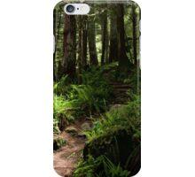 Trail to Green Lake - Mt. Rainier N. P. iPhone Case/Skin