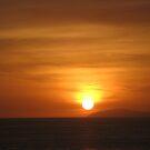 Sunburst by cfam