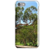 Trephina River Northern Territory iPhone Case/Skin