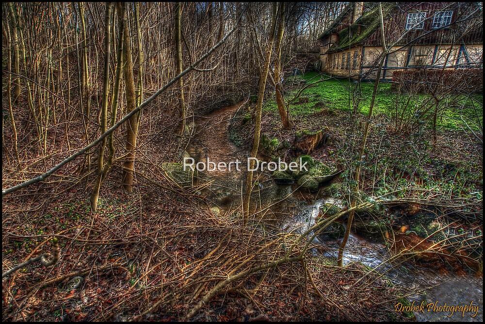 The Stream by Robert Drobek