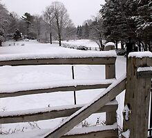 A wintery day in The Country by Larry Llewellyn