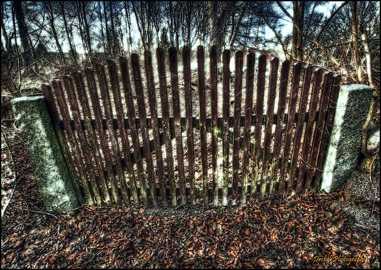 The Gate by Robert Drobek