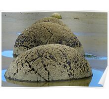 Steamed Puddings by the Sea! - Moeraki Boulders NZ Poster