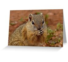 Say Your Prayers Before Breakfast - Ground Squirrel - SA Greeting Card