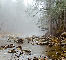 Jennings Creek Series - A little Fog by Rod  Adams