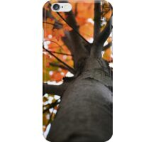Autumn in New England iPhone Case/Skin