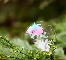 Soap Bubble I by Colleen Farrell