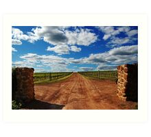 Vineyard # 2  Art Print