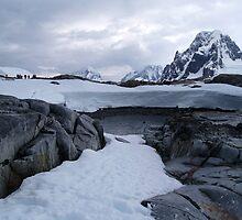 Classic Antarctica by Juilee  Pryor