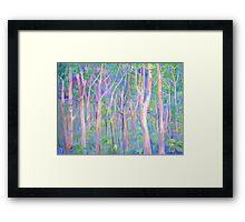 Mt Lindesay Hidden  Framed Print