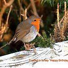 Happy Birthday Lynn by Photography  by Mathilde