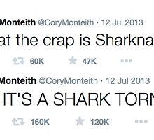 What the crap is a sharknado? by iheartcory