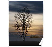 Sunset 3 02-02-08 Poster
