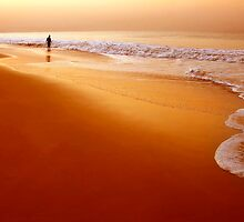 Browny Morning by bnilesh
