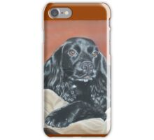 Cattermole Cocker iPhone Case/Skin