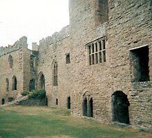 Ludlow Castle by lunacy79