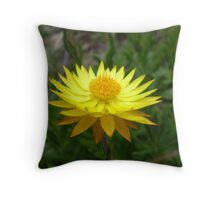 Everlasting Obsession Throw Pillow
