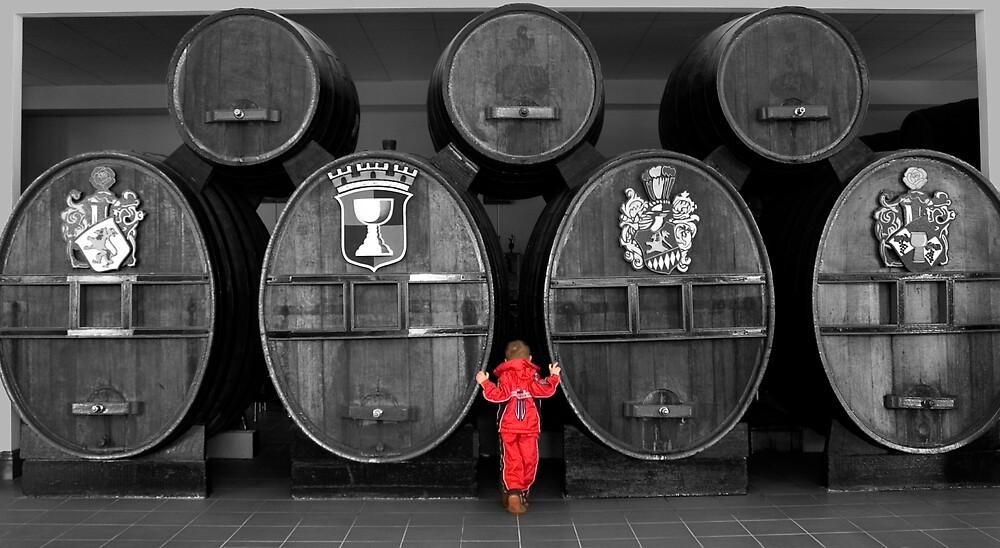 Red Boy by Kath Bowman