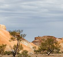 Painted Desert Panorama by Kath Bowman