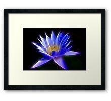 Flaming Flower Framed Print