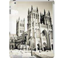 Washington DC Winter iPad Case/Skin