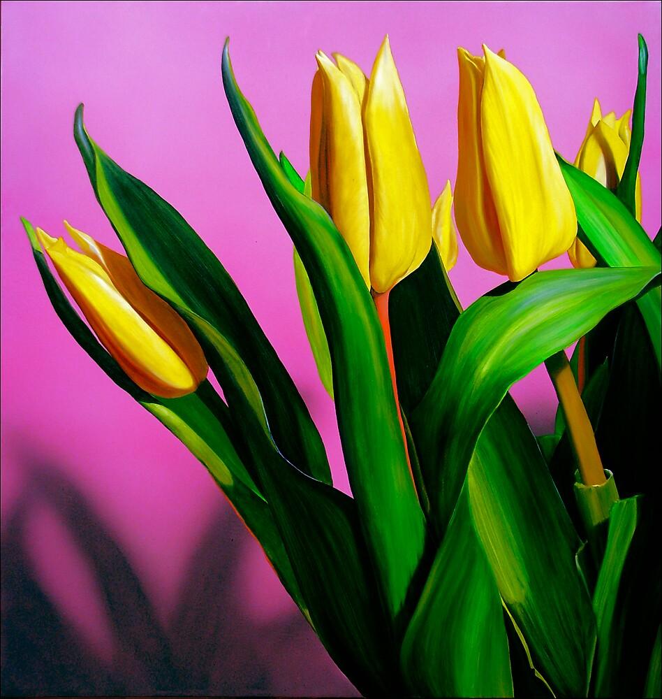 Tulips by Matthew  Bates