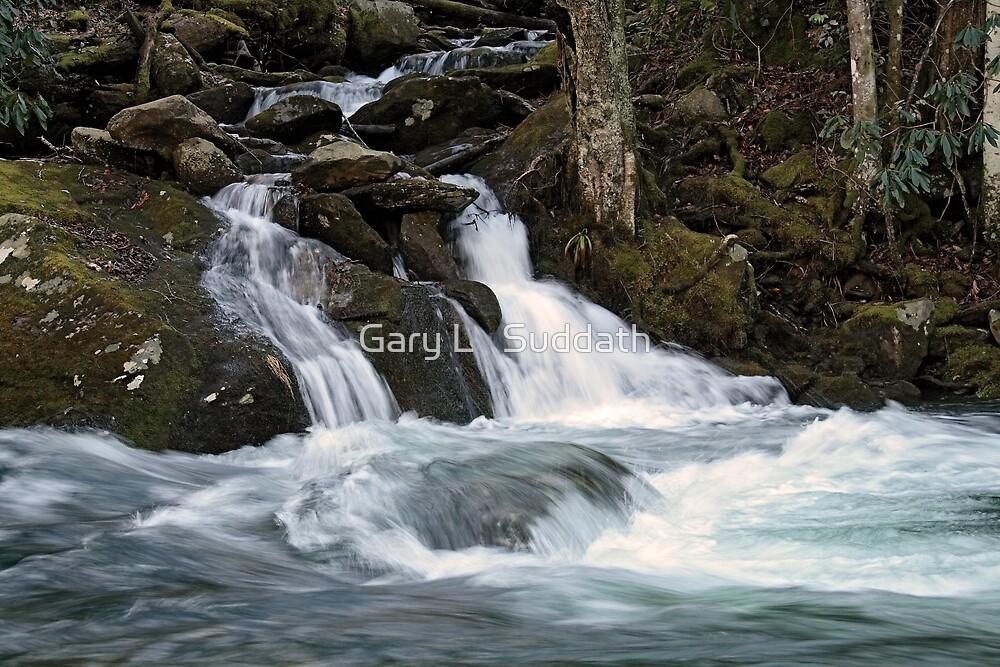 Mannis Branch Falls by Gary L   Suddath