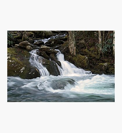 Mannis Branch Falls Photographic Print