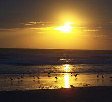 orange dawn by JLPhotos