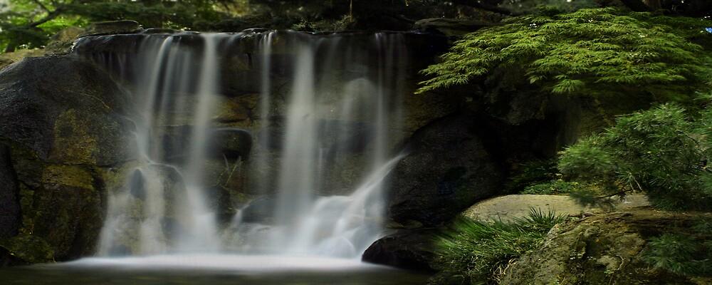 Waterfall by Debbie Sickler