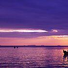 Fishing Boats at Sunset by John Violet