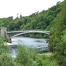 Craigellachie Bridge II by Tom Gomez