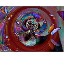 Abstract and Butterflies Photographic Print