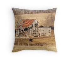 Favorite Barn Throw Pillow